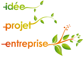 entreprise creation